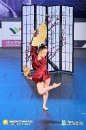 Krajowe Mistrzostwa IDO Jazz Dance, Show Dance - Wałbrzych 2016_19